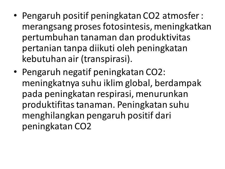 • Pengaruh positif peningkatan CO2 atmosfer : merangsang proses fotosintesis, meningkatkan pertumbuhan tanaman dan produktivitas pertanian tanpa diikuti oleh peningkatan kebutuhan air (transpirasi).