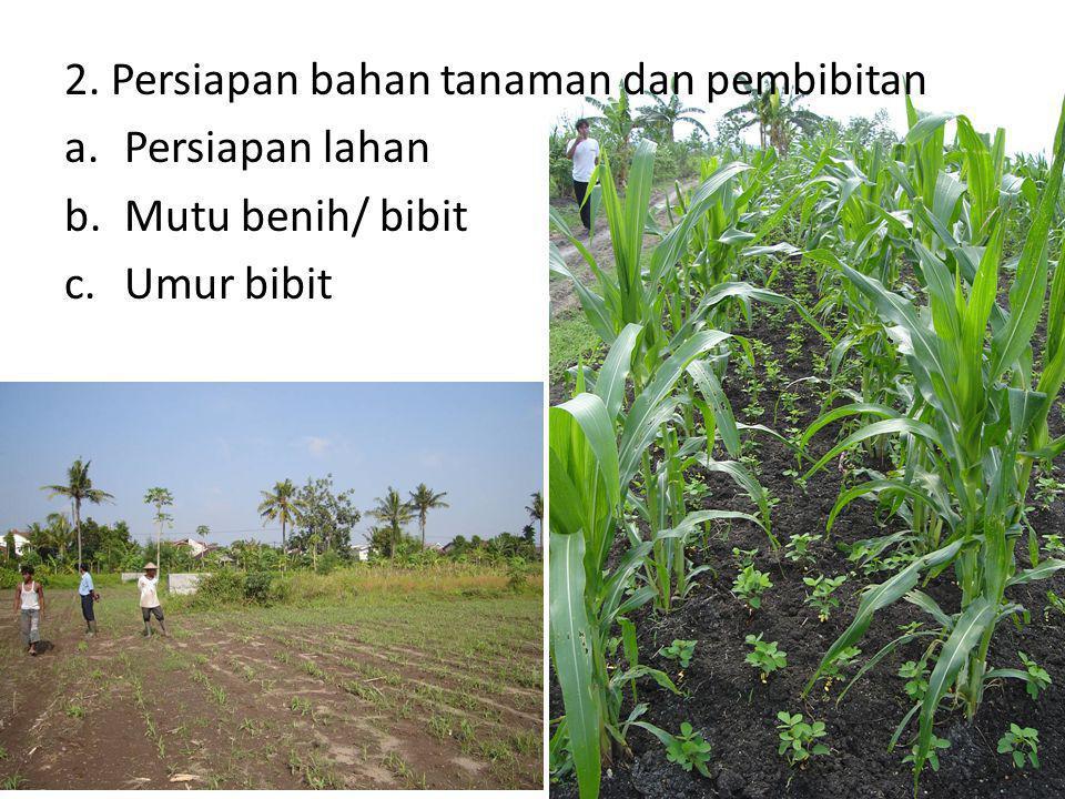 2. Persiapan bahan tanaman dan pembibitan a.Persiapan lahan b.Mutu benih/ bibit c.Umur bibit