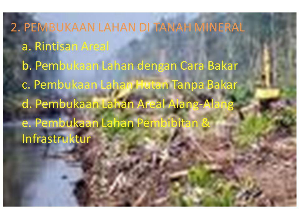 2.PEMBUKAAN LAHAN DI TANAH MINERAL a. Rintisan Areal b.