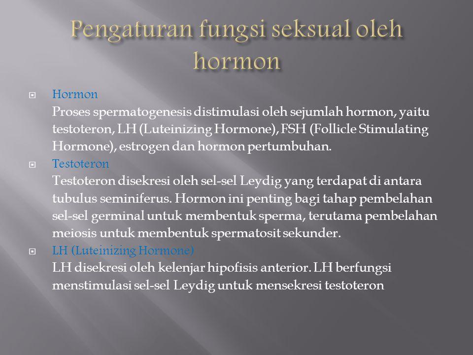  Hormon Proses spermatogenesis distimulasi oleh sejumlah hormon, yaitu testoteron, LH (Luteinizing Hormone), FSH (Follicle Stimulating Hormone), estrogen dan hormon pertumbuhan.