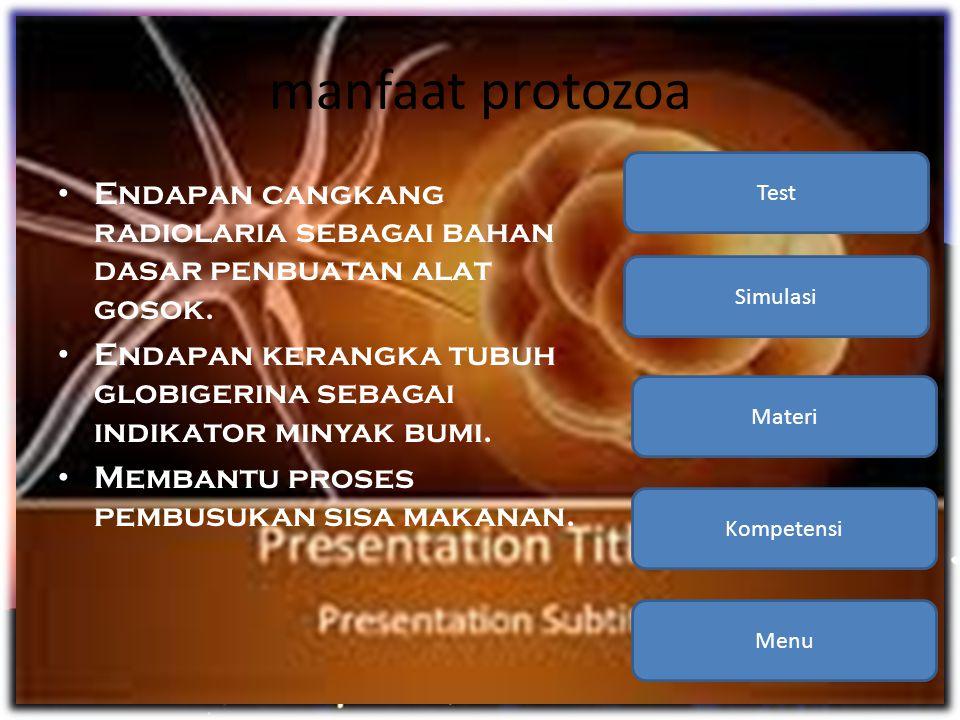 manfaat protozoa • Endapan cangkang radiolaria sebagai bahan dasar penbuatan alat gosok. • Endapan kerangka tubuh globigerina sebagai indikator minyak