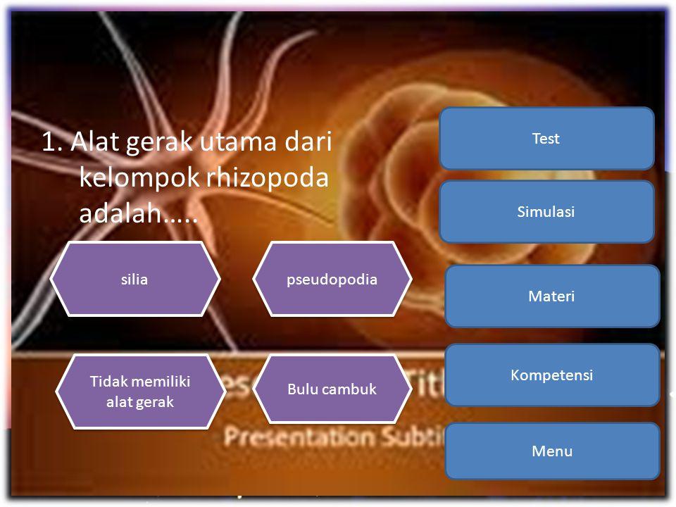1. Alat gerak utama dari kelompok rhizopoda adalah….. Menu Kompetensi Materi Simulasi Test silia Bulu cambuk Tidak memiliki alat gerak Tidak memiliki