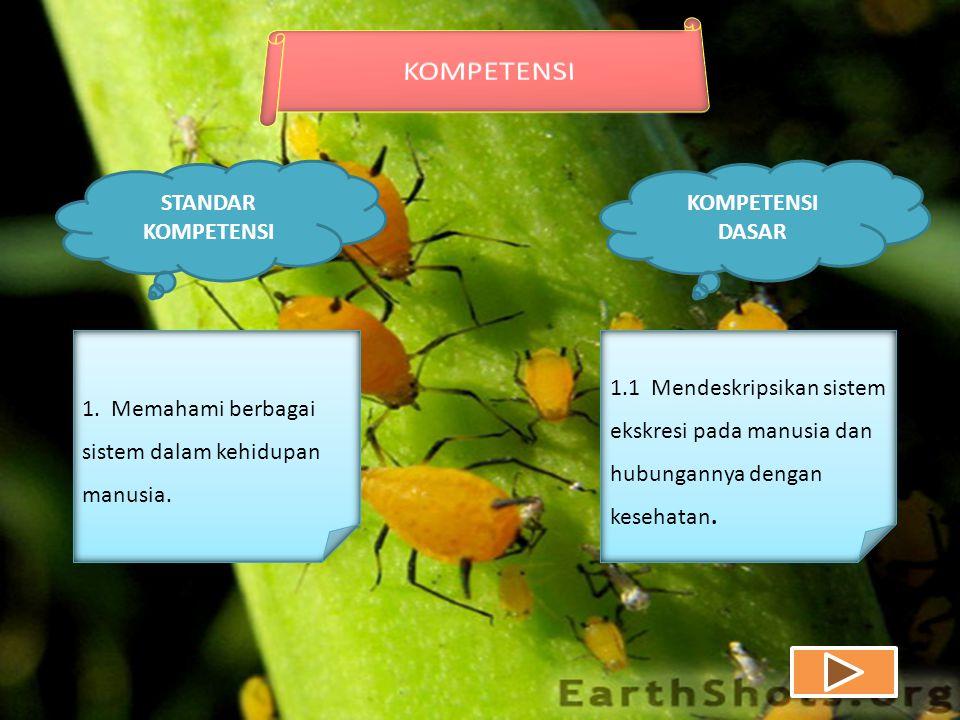 KOMPETENSI DASAR STANDAR KOMPETENSI 1. Memahami berbagai sistem dalam kehidupan manusia.