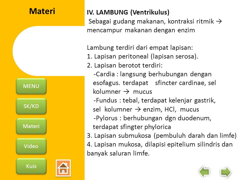 SK/KD Materi Video Kuis MENU 5.