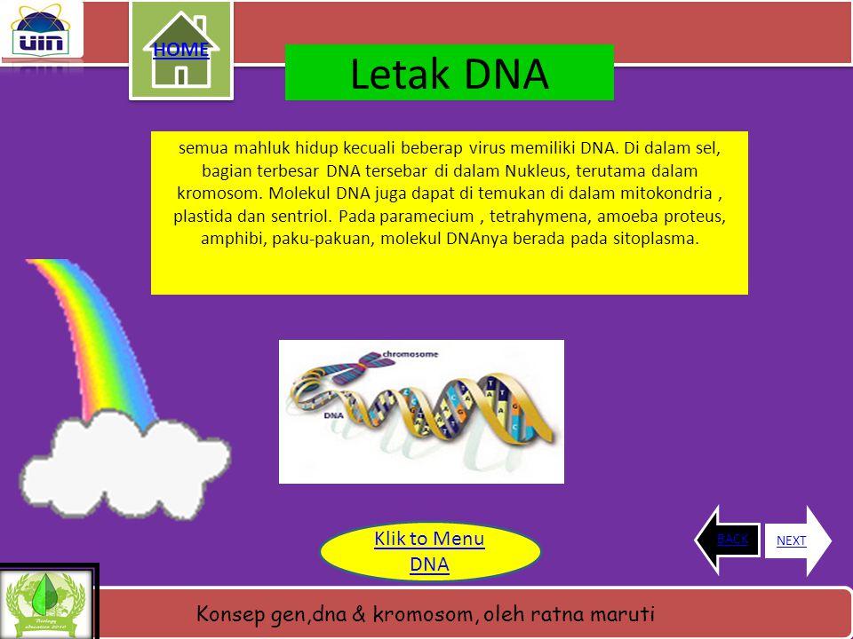 Konsep gen,dna & kromosom, oleh ratna maruti Pengertian DNA • DNA dikatakan sebagai unit molekul penyusun kehidupan ???karena di dalam struktur DNA te