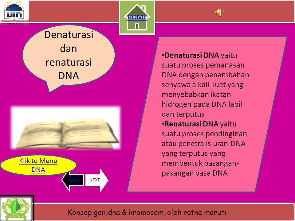 Konsep gen,dna & kromosom, oleh ratna maruti Gambar DNA HOME BACKNEXT Klik to Menu DNA