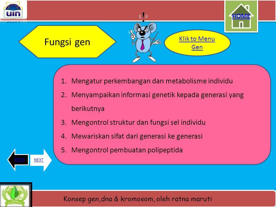 Konsep gen,dna & kromosom, oleh ratna maruti Pengertian GEN • Gen merupakan unit- unit pewarisan sifat yang menentukan sifat suatu organisme yang di t