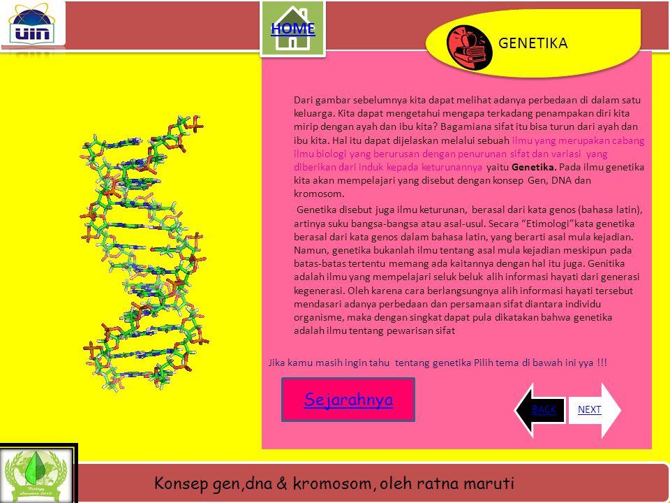 Konsep gen,dna & kromosom, oleh ratna maruti BACKNEXT GENETIKA GENETIKA aYo apa yang dapat kamu deskripsikan ???? RAHASIA NYA ADA DISINI Sumber gambar
