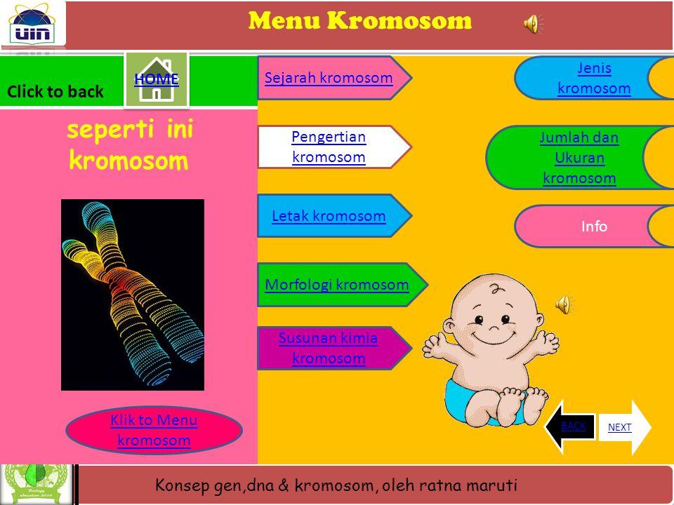 Konsep gen,dna & kromosom, oleh ratna maruti KUIS AYO SIAPA TAHU • Jawaban • Kromosom : merupakan benda- benda yang halus berbentuk lurus seperti bata