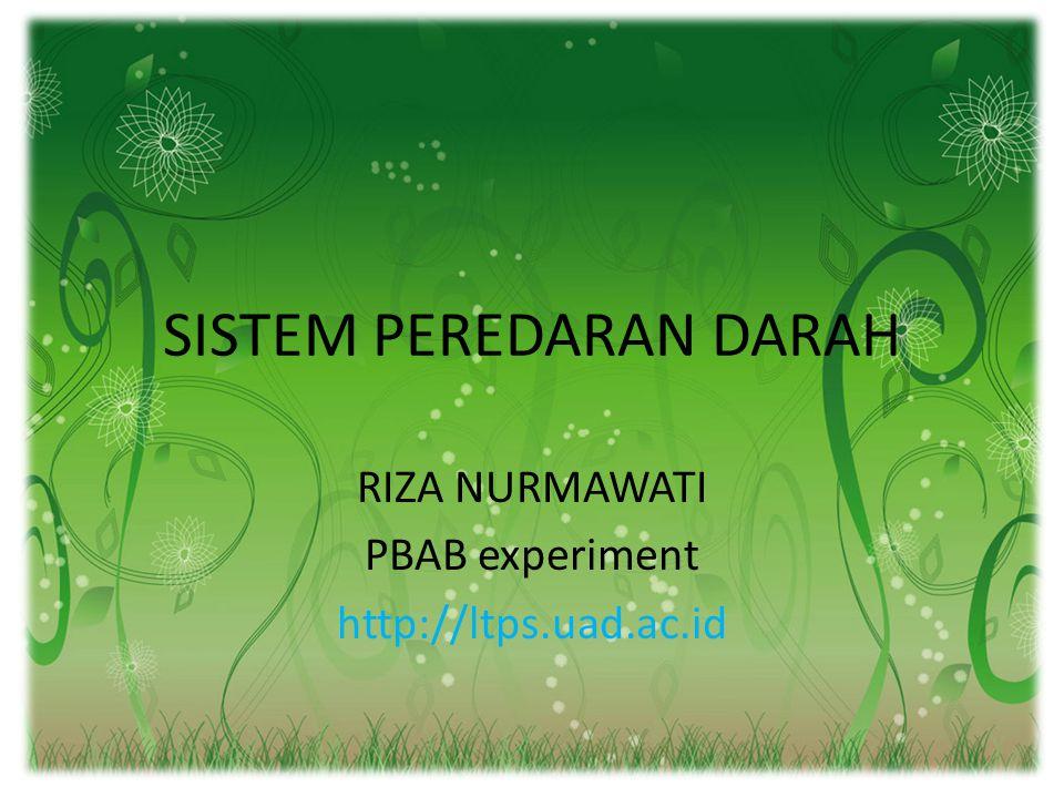 SISTEM PEREDARAN DARAH RIZA NURMAWATI PBAB experiment http://ltps.uad.ac.id