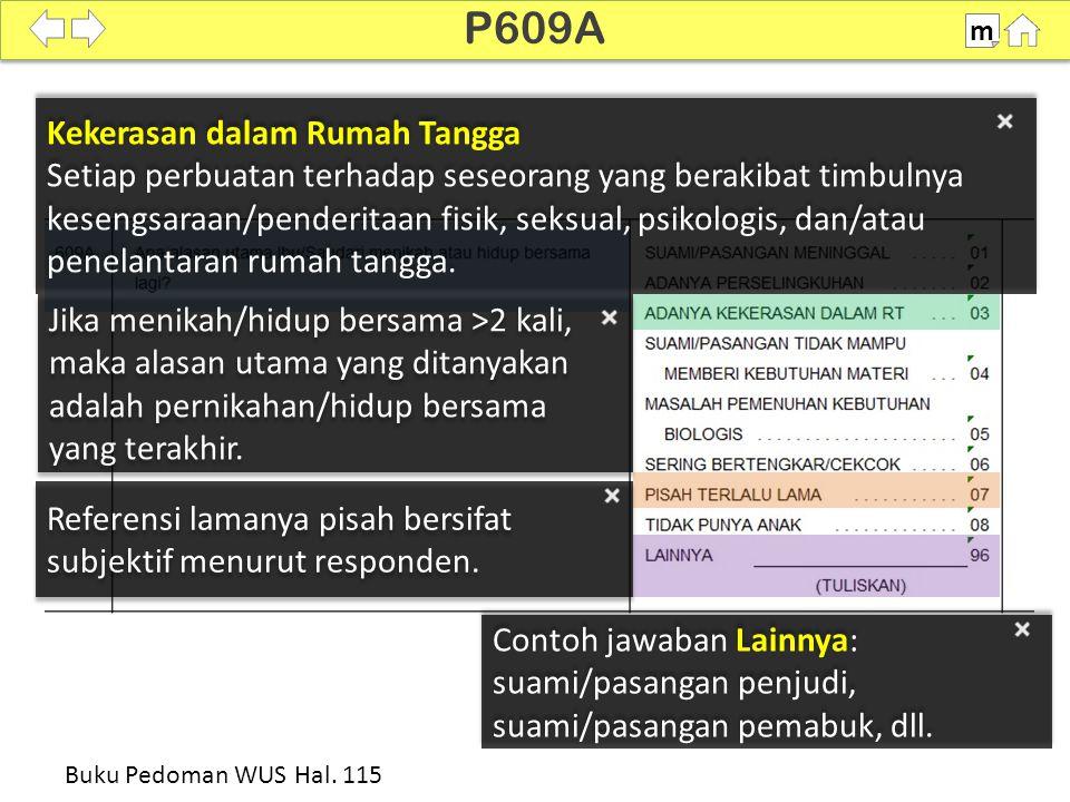 100% P610-P611 m Buku Pedoman WUS Hal. 115-116