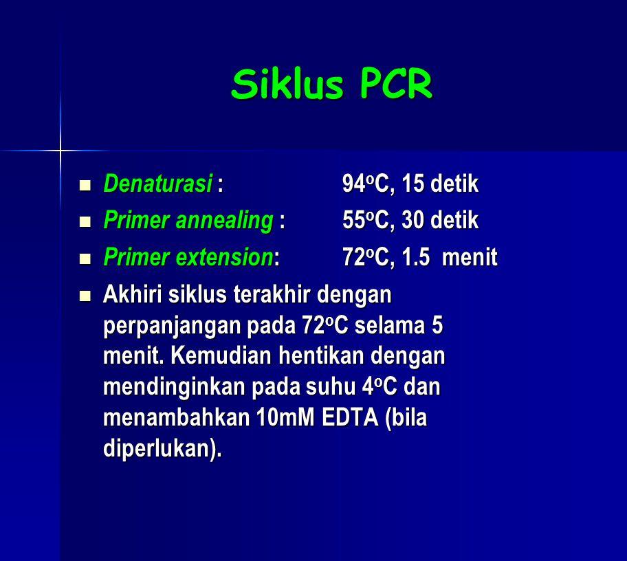 Siklus PCR  Denaturasi :94 o C, 15 detik  Primer annealing :55 o C, 30 detik  Primer extension : 72 o C, 1.5 menit  Akhiri siklus terakhir dengan