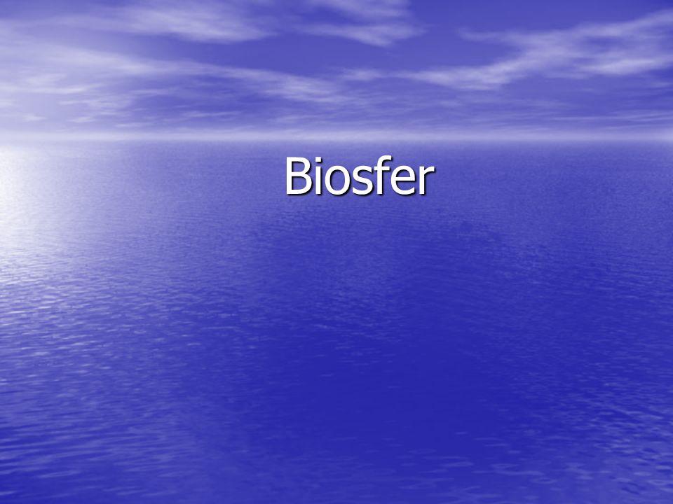 Pengertian Biosfer  Biosfer terdiri dari dua kata  Bio = Hidup  Spehere = lapisan  Biosfer adalah lapisan tempat tinggal mahluk hidup, termasuk interaksinya dengan unsur litosfer (batuan), hidrosfer (air), dan atmosfer (udara) Bumi litosfer hidrosferatmosferlitosfer hidrosferatmosfer