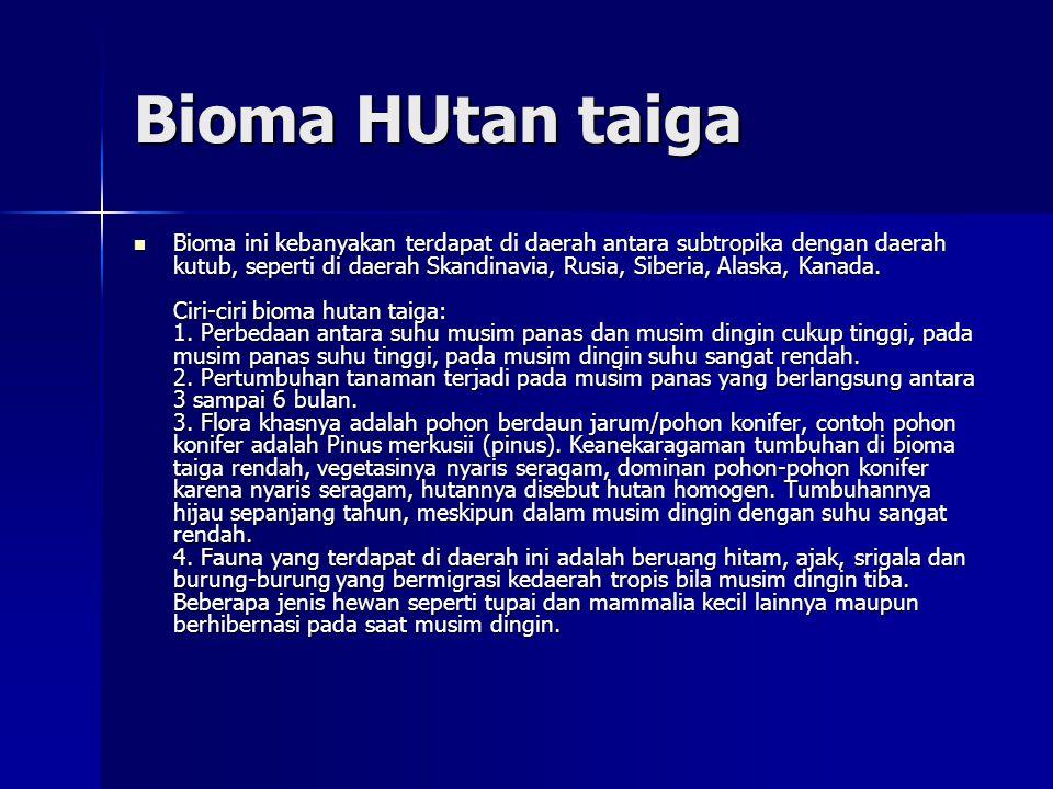 Bioma HUtan taiga  Bioma ini kebanyakan terdapat di daerah antara subtropika dengan daerah kutub, seperti di daerah Skandinavia, Rusia, Siberia, Alaska, Kanada.