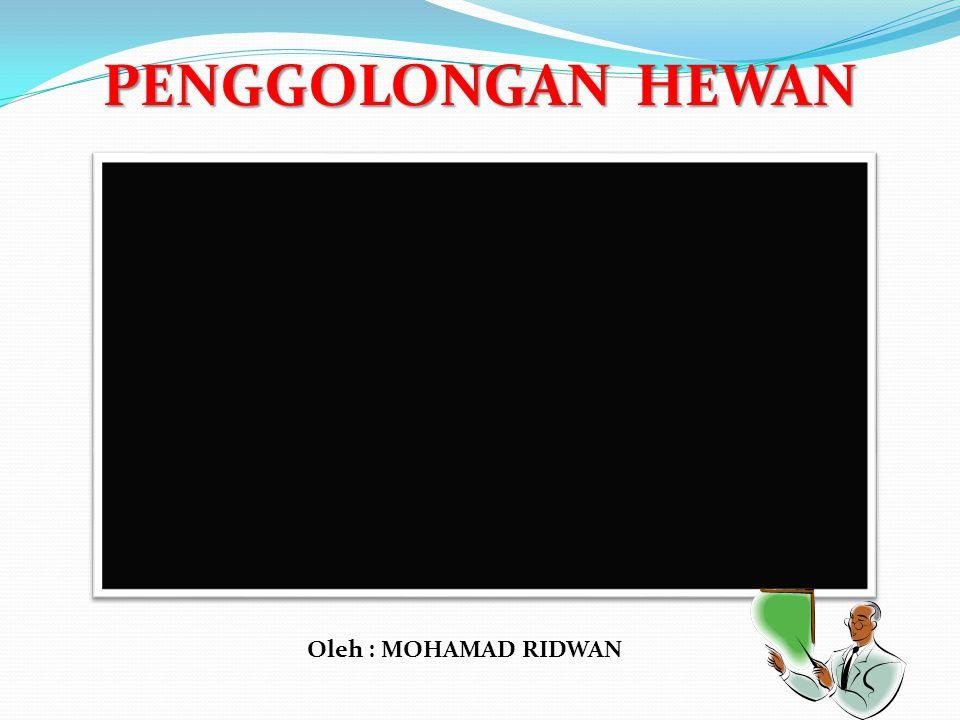 PENGGOLONGAN HEWAN Oleh : MOHAMAD RIDWAN
