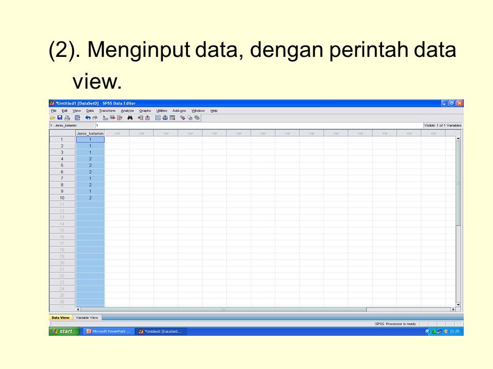 (2). Menginput data, dengan perintah data view.
