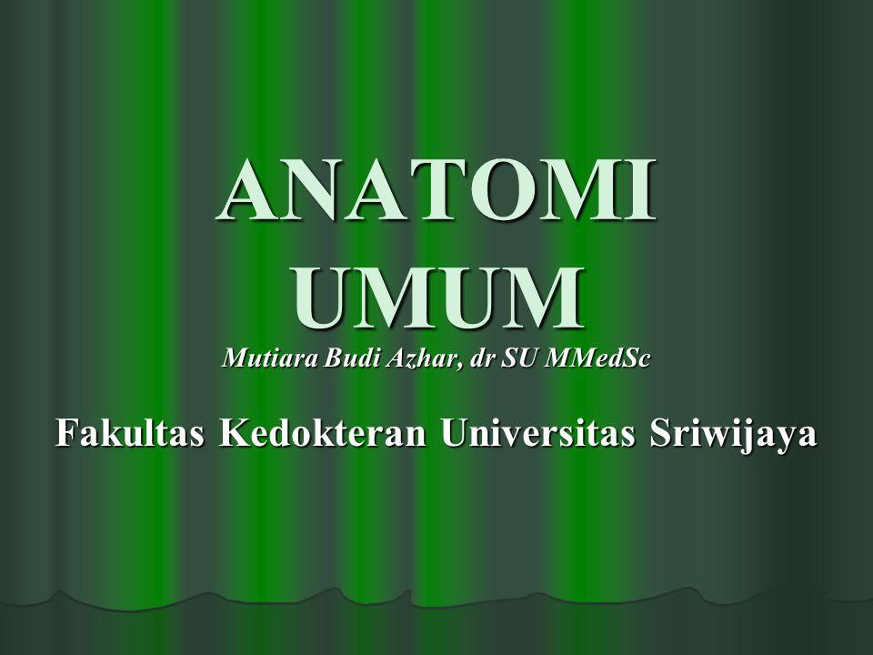 Anatomi Umum 2 Mutiara Budi Azhar Pendahuluan  Anatomy is the science of the structure of the body.