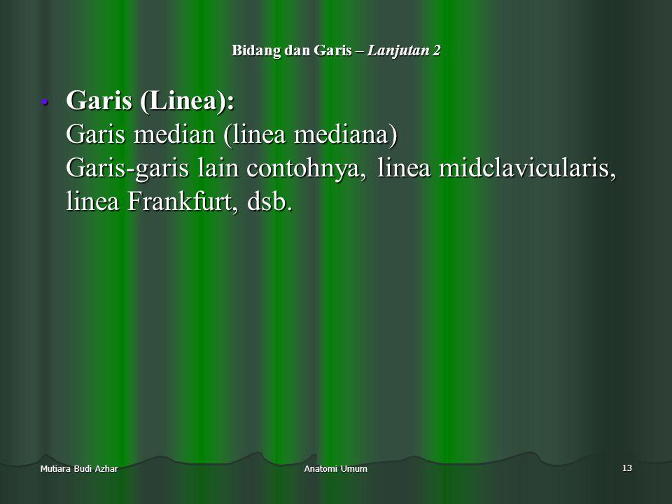 Anatomi Umum 13 Mutiara Budi Azhar Bidang dan Garis – Lanjutan 2 • Garis (Linea): Garis median (linea mediana) Garis-garis lain contohnya, linea midcl