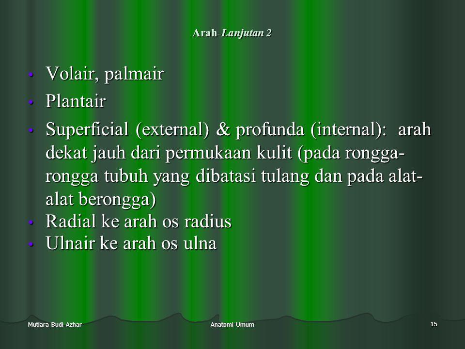 Anatomi Umum 15 Mutiara Budi Azhar Arah-Lanjutan 2 • Volair, palmair • Plantair • Superficial (external) & profunda (internal): arah dekat jauh dari p