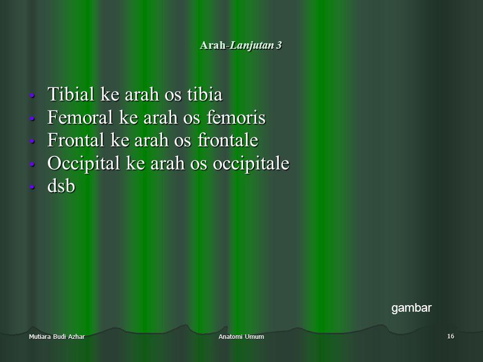 Anatomi Umum 16 Mutiara Budi Azhar Arah-Lanjutan 3 • Tibial ke arah os tibia • Femoral ke arah os femoris • Frontal ke arah os frontale • Occipital ke