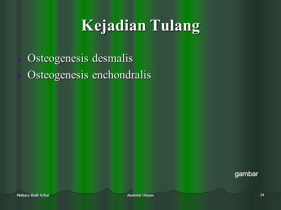 Anatomi Umum 24 Mutiara Budi Azhar Kejadian Tulang • Osteogenesis desmalis • Osteogenesis enchondralis gambar