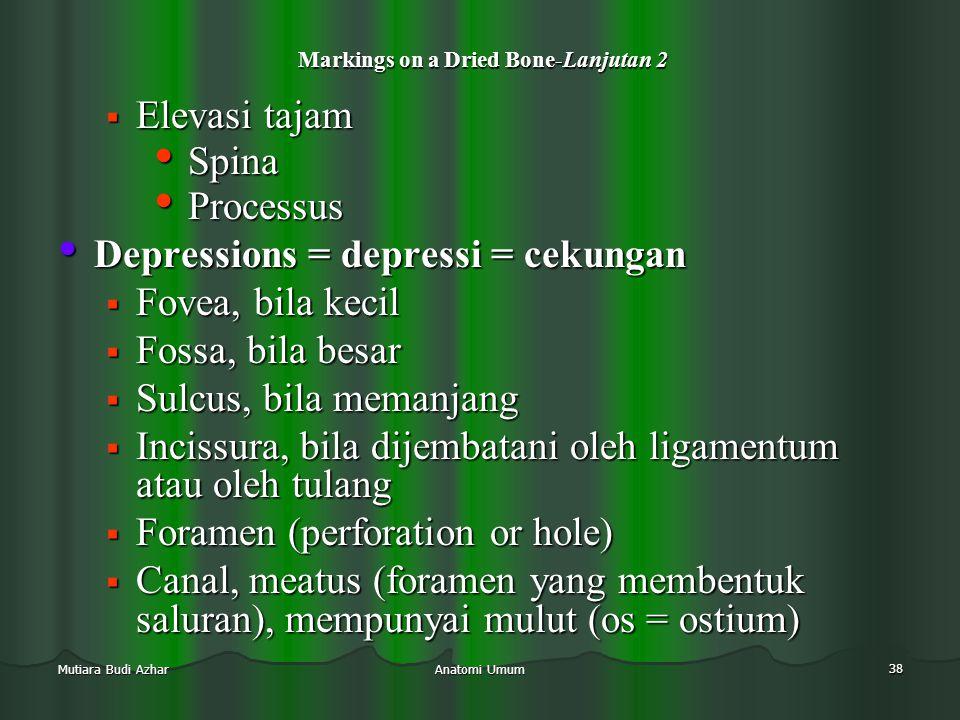 Anatomi Umum 38 Mutiara Budi Azhar Markings on a Dried Bone-Lanjutan 2 Markings on a Dried Bone-Lanjutan 2  Elevasi tajam • Spina • Processus • Depre
