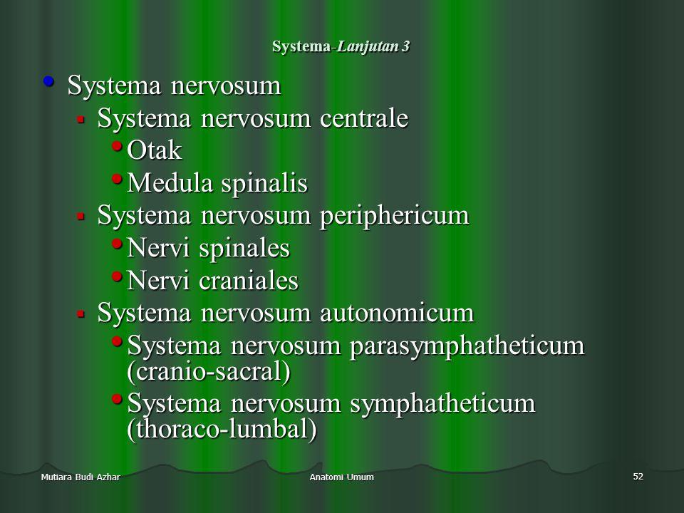 Anatomi Umum 52 Mutiara Budi Azhar Systema-Lanjutan 3 • Systema nervosum  Systema nervosum centrale • Otak • Medula spinalis  Systema nervosum perip