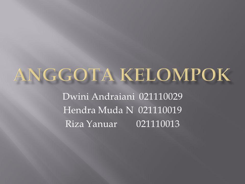 Dwini Andraiani 021110029 Hendra Muda N 021110019 Riza Yanuar 021110013