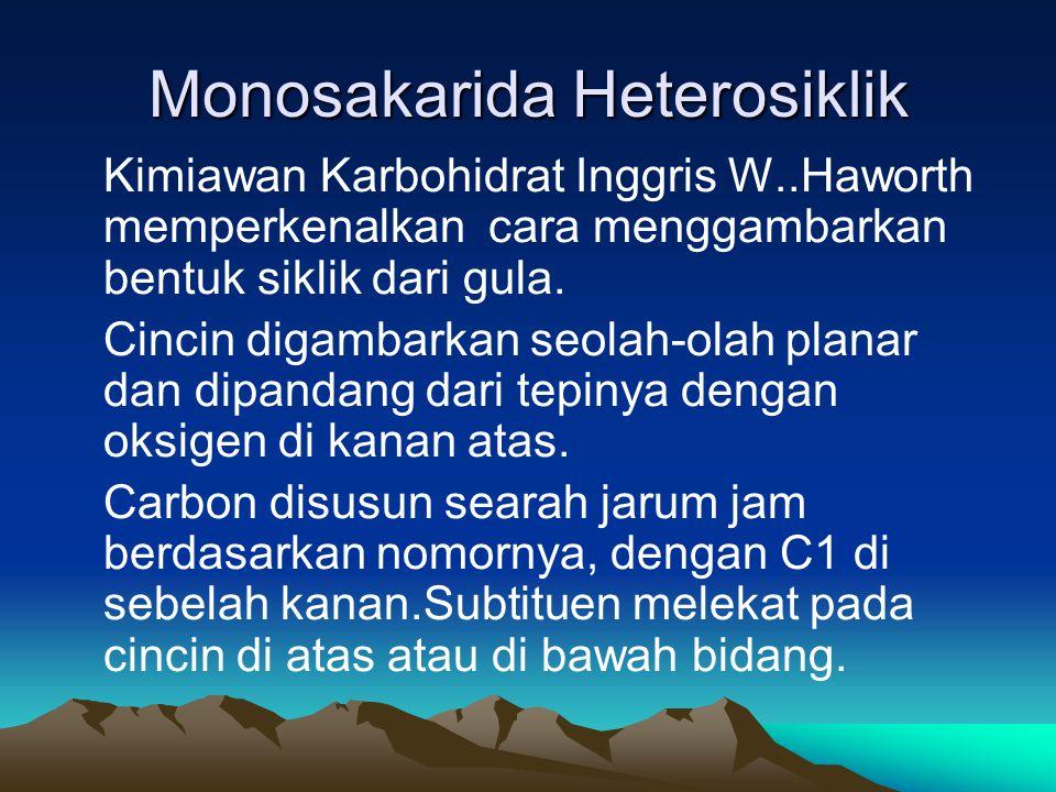 Monosakarida Heterosiklik Kimiawan Karbohidrat Inggris W..Haworth memperkenalkan cara menggambarkan bentuk siklik dari gula.