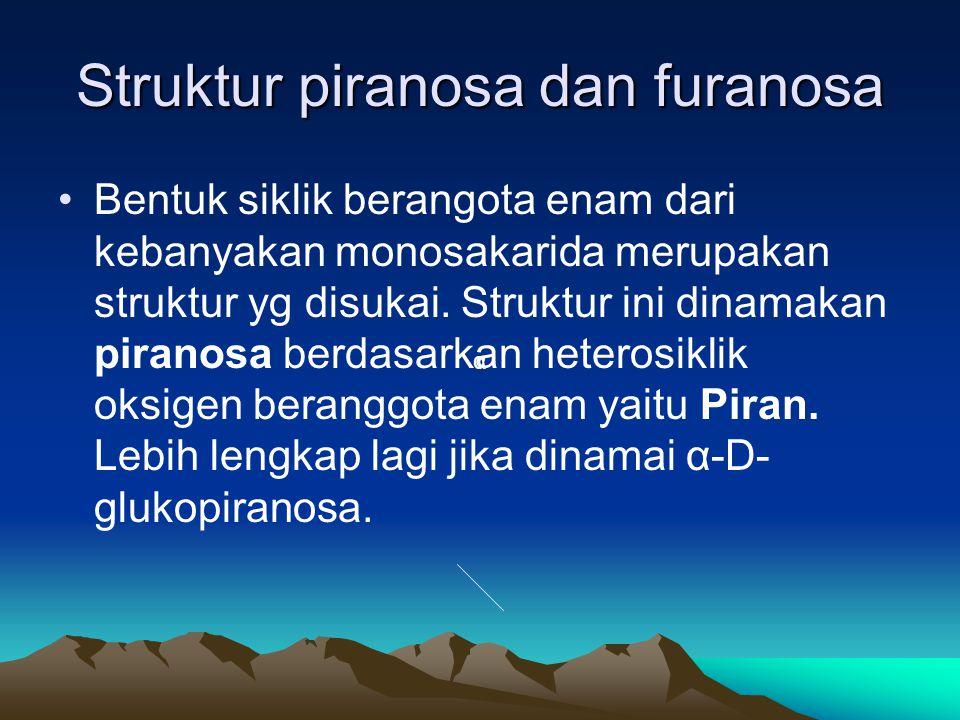 Struktur piranosa dan furanosa •Bentuk siklik berangota enam dari kebanyakan monosakarida merupakan struktur yg disukai.