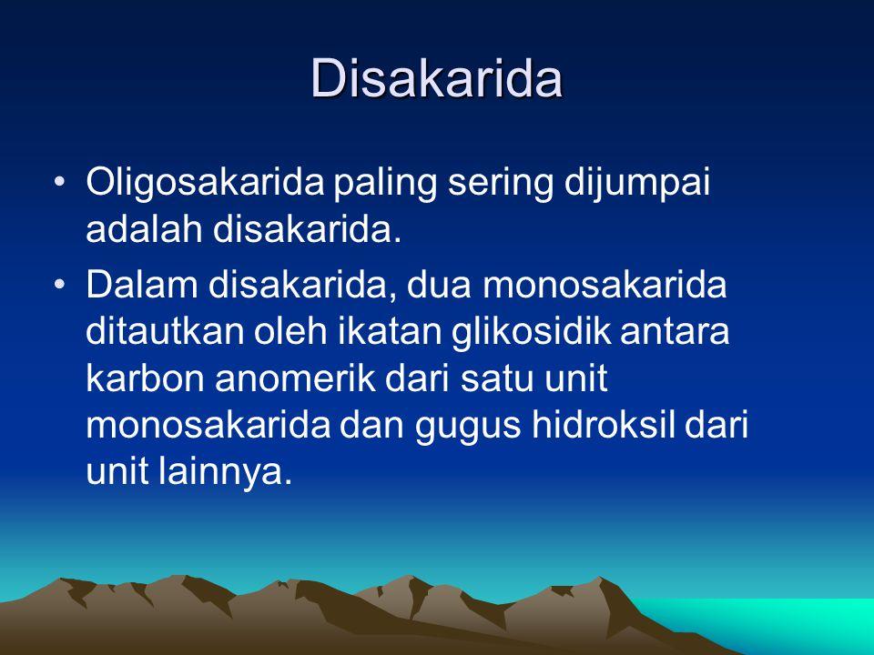 Disakarida •Oligosakarida paling sering dijumpai adalah disakarida.
