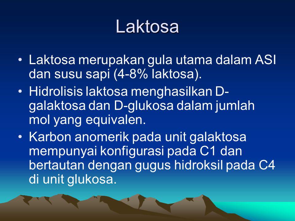 Laktosa •Laktosa merupakan gula utama dalam ASI dan susu sapi (4-8% laktosa).