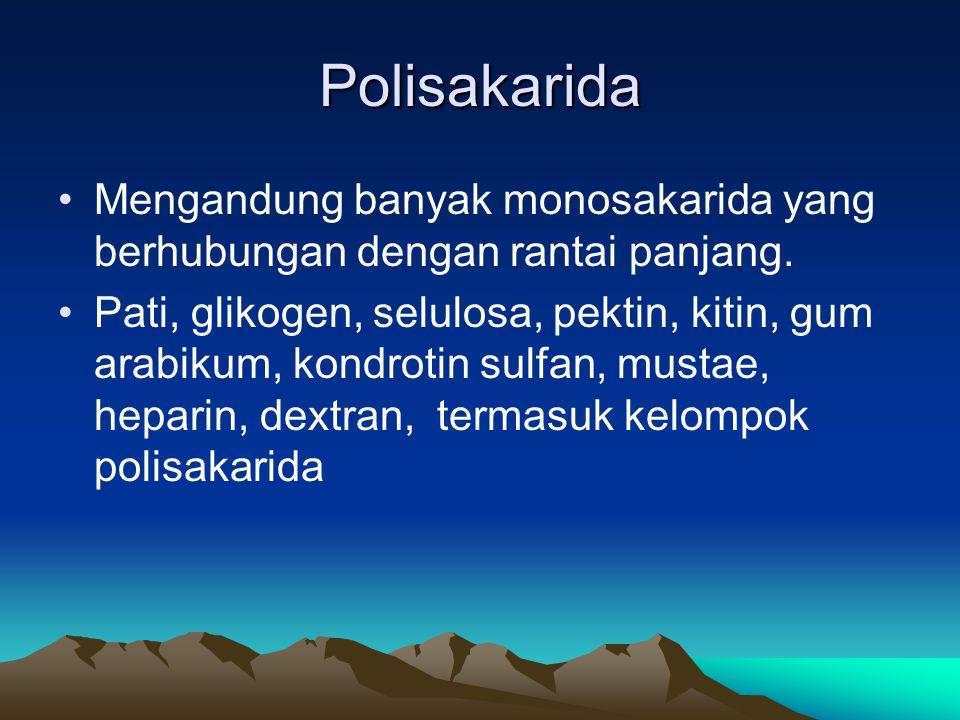 Polisakarida •Mengandung banyak monosakarida yang berhubungan dengan rantai panjang.