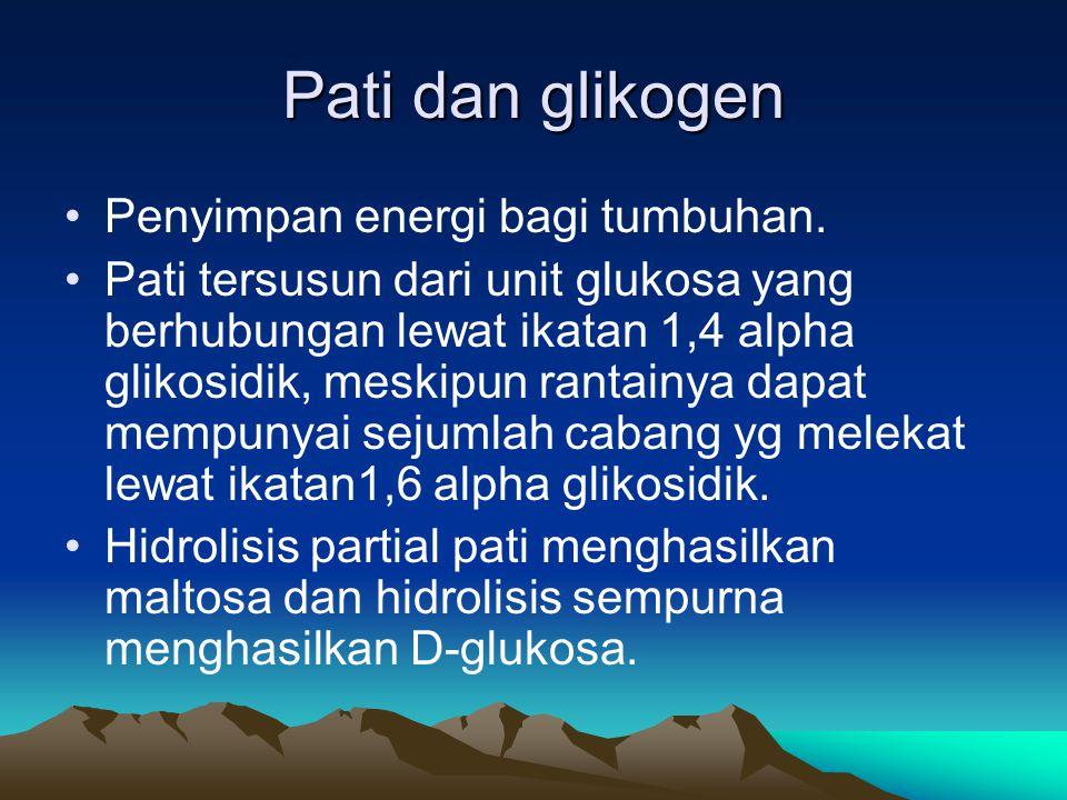 Pati dan glikogen •Penyimpan energi bagi tumbuhan.