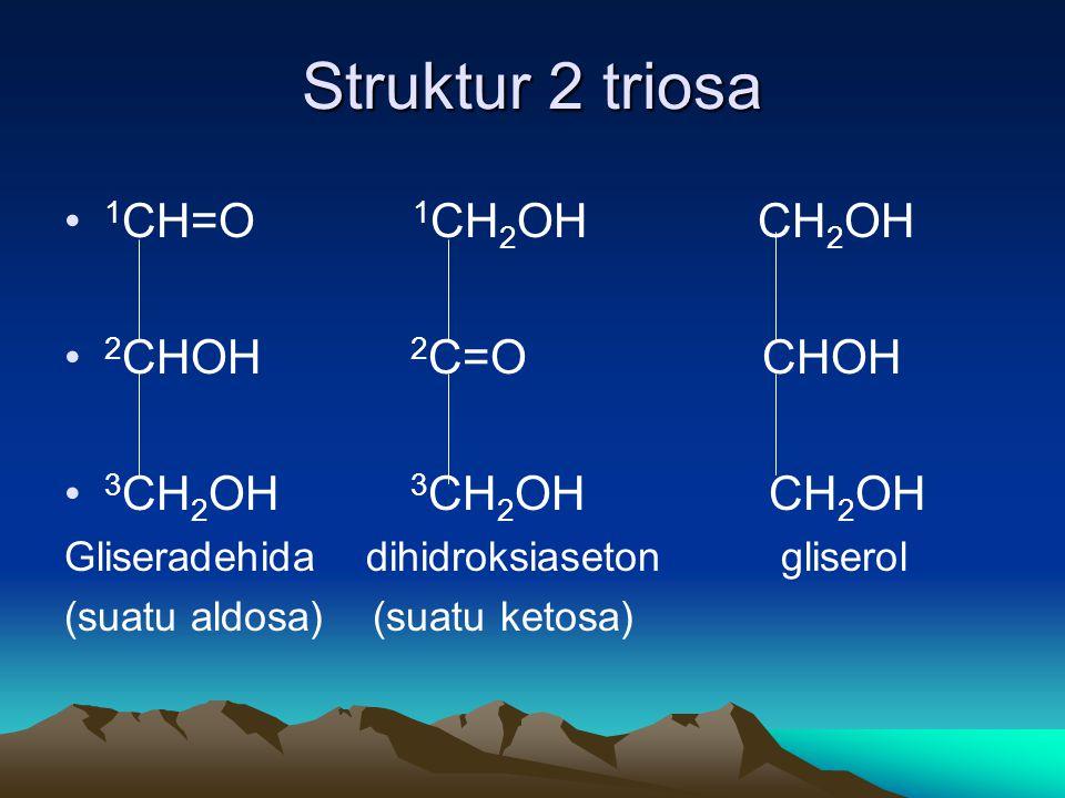 Struktur 2 triosa • 1 CH=O 1 CH 2 OH CH 2 OH • 2 CHOH 2 C=O CHOH • 3 CH 2 OH 3 CH 2 OH CH 2 OH Gliseradehida dihidroksiaseton gliserol (suatu aldosa) (suatu ketosa)