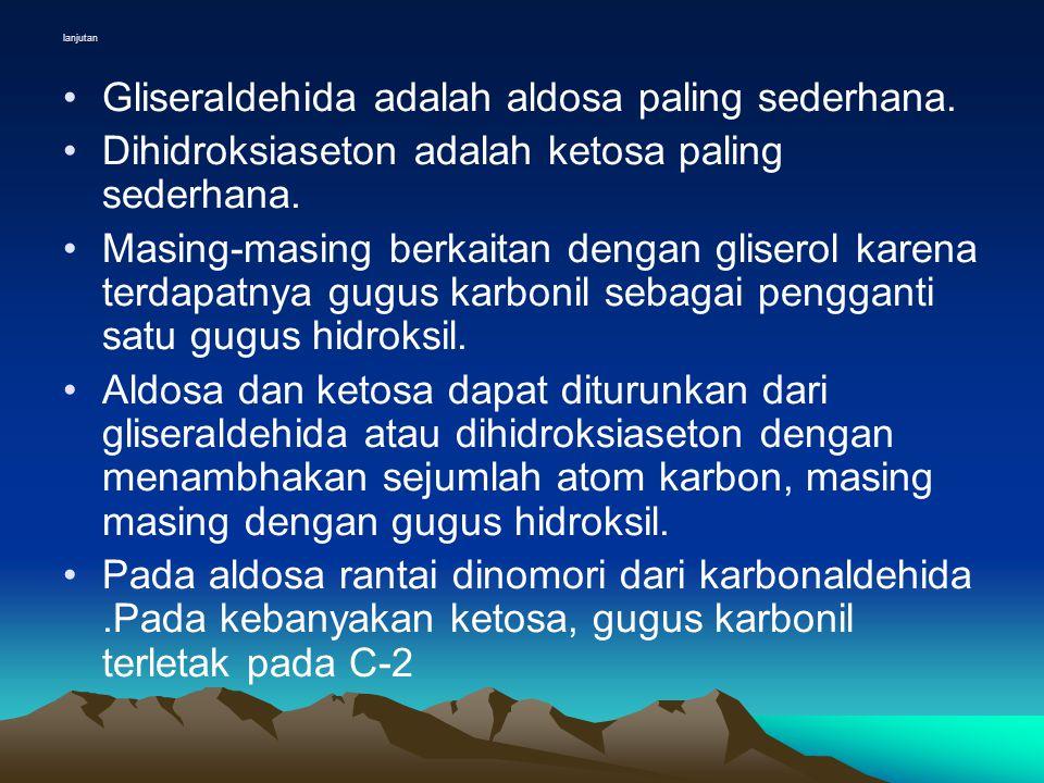 lanjutan •Gliseraldehida adalah aldosa paling sederhana.