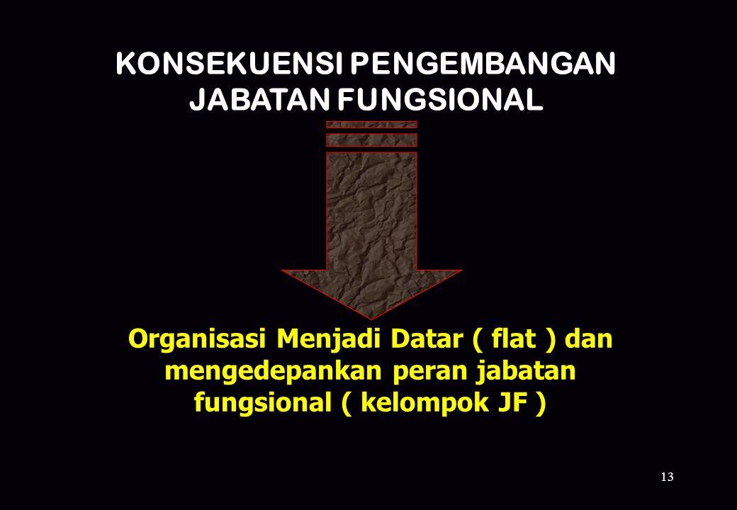 13 KONSEKUENSI PENGEMBANGAN JABATAN FUNGSIONAL Organisasi Menjadi Datar ( flat ) dan mengedepankan peran jabatan fungsional ( kelompok JF )