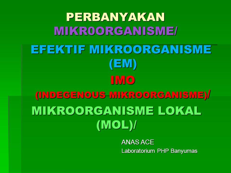 MIKROORGANISME LOKAL (MOL)/ ANAS ACE Laboratorium PHP Banyumas PERBANYAKAN MIKR0ORGANISME/ IMO (INDEGENOUS MIKROORGANISME) / EFEKTIF MIKROORGANISME (E