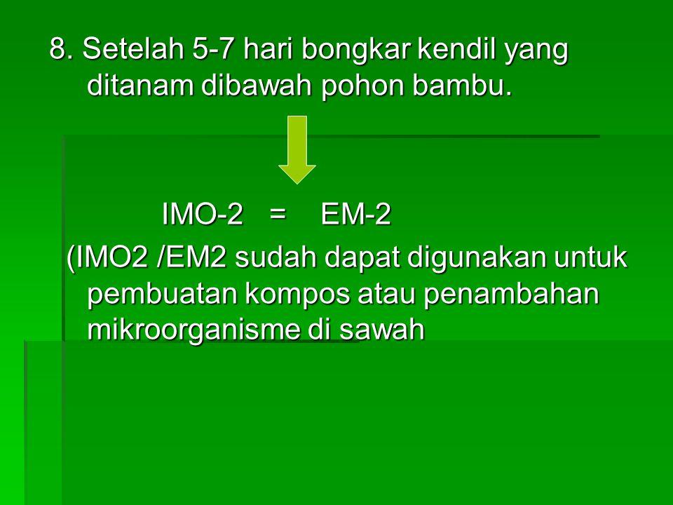 8. Setelah 5-7 hari bongkar kendil yang ditanam dibawah pohon bambu. IMO-2 = EM-2 IMO-2 = EM-2 (IMO2 /EM2 sudah dapat digunakan untuk pembuatan kompos