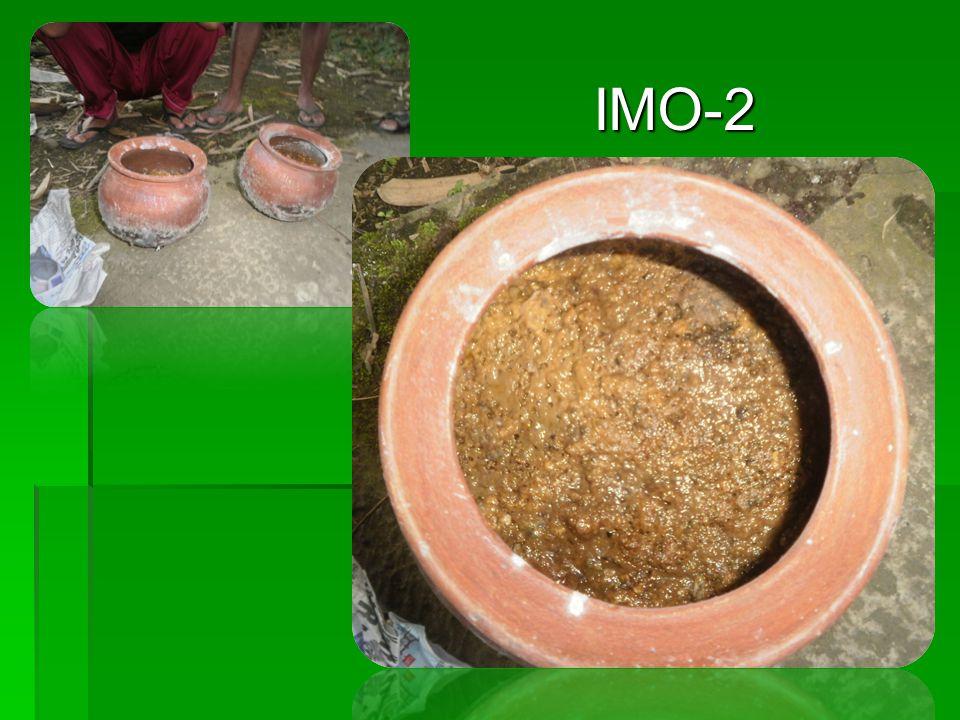 IMO-2 IMO-2