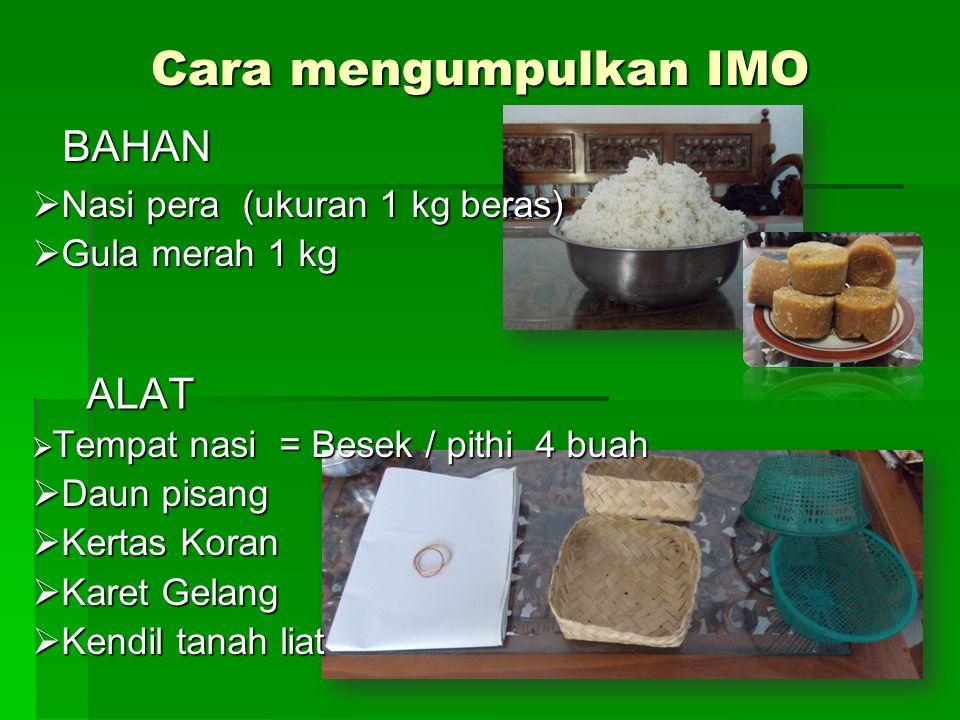 Cara mengumpulkan IMO BAHAN ALAT ALAT  Nasi pera (ukuran 1 kg beras)  Gula merah 1 kg  Tempat nasi = Besek / pithi 4 buah  Daun pisang  Kertas Ko