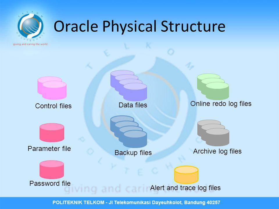 Oracle Physical Structure Online redo log files Password file Archive log files Control files Data files Alert and trace log files Backup files Parame