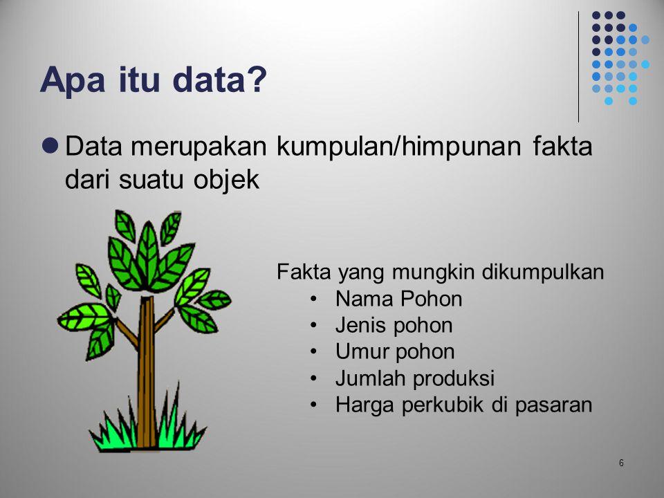 6 Apa itu data?  Data merupakan kumpulan/himpunan fakta dari suatu objek Fakta yang mungkin dikumpulkan •Nama Pohon •Jenis pohon •Umur pohon •Jumlah