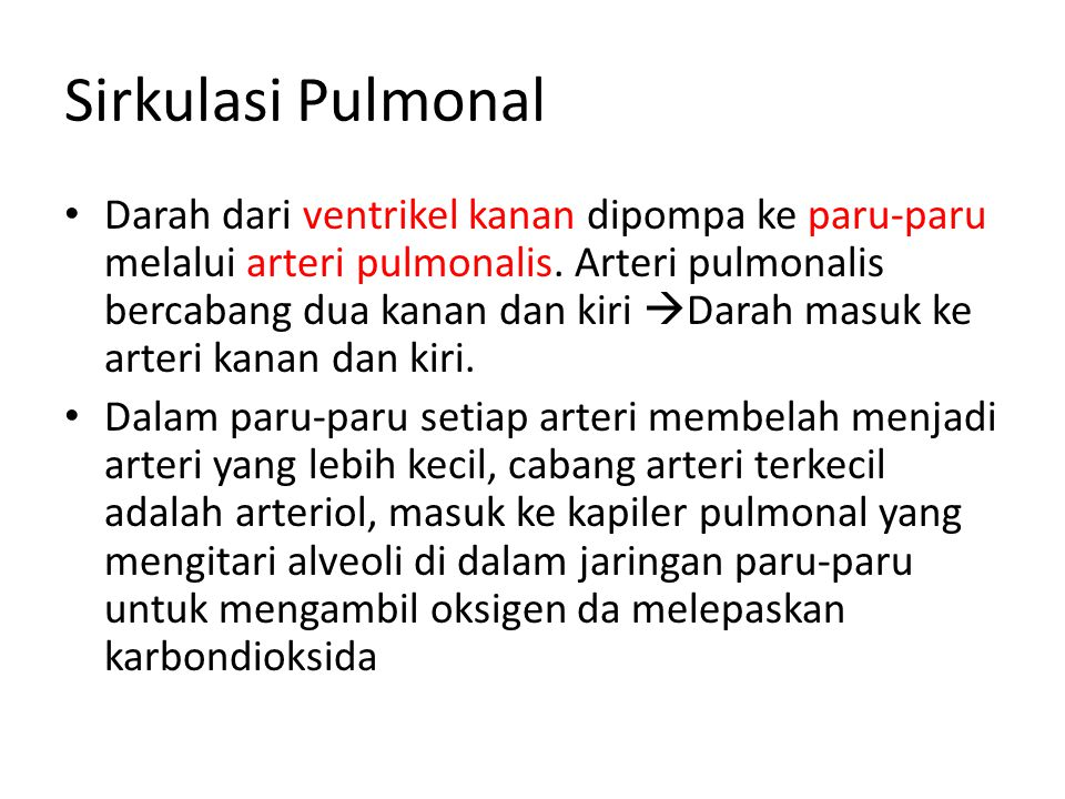 Sirkulasi Pulmonal • Darah dari ventrikel kanan dipompa ke paru-paru melalui arteri pulmonalis. Arteri pulmonalis bercabang dua kanan dan kiri  Darah