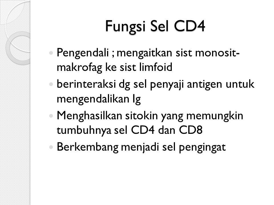 Fungsi Sel CD4  Pengendali ; mengaitkan sist monosit- makrofag ke sist limfoid  berinteraksi dg sel penyaji antigen untuk mengendalikan Ig  Menghasilkan sitokin yang memungkin tumbuhnya sel CD4 dan CD8  Berkembang menjadi sel pengingat