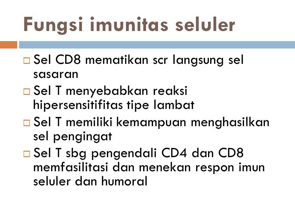 Fungsi imunitas seluler  Sel CD8 mematikan scr langsung sel sasaran  Sel T menyebabkan reaksi hipersensitifitas tipe lambat  Sel T memiliki kemampuan menghasilkan sel pengingat  Sel T sbg pengendali CD4 dan CD8 memfasilitasi dan menekan respon imun seluler dan humoral