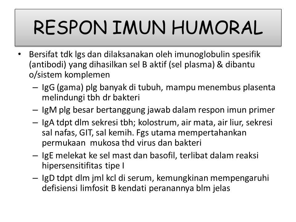 RESPON IMUN HUMORAL • Bersifat tdk lgs dan dilaksanakan oleh imunoglobulin spesifik (antibodi) yang dihasilkan sel B aktif (sel plasma) & dibantu o/sistem komplemen – IgG (gama) plg banyak di tubuh, mampu menembus plasenta melindungi tbh dr bakteri – IgM plg besar bertanggung jawab dalam respon imun primer – IgA tdpt dlm sekresi tbh; kolostrum, air mata, air liur, sekresi sal nafas, GIT, sal kemih.