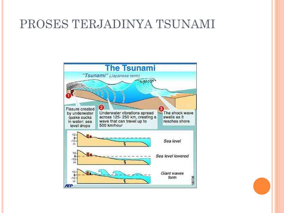 PROSES TERJADINYA TSUNAMI