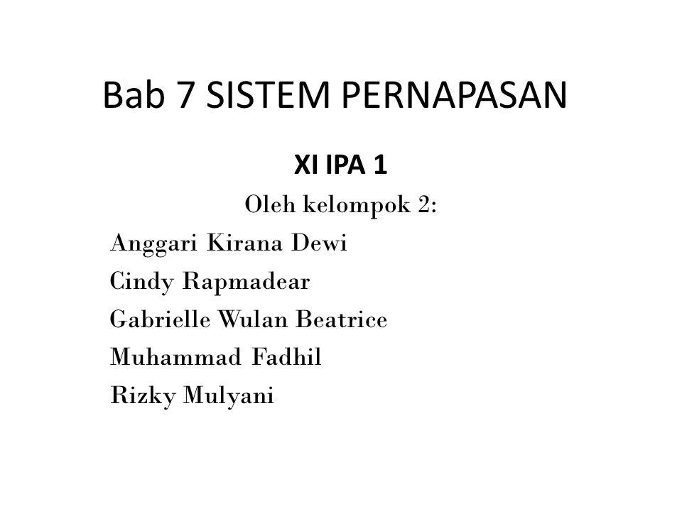 Bab 7 SISTEM PERNAPASAN XI IPA 1 Oleh kelompok 2: Anggari Kirana Dewi Cindy Rapmadear Gabrielle Wulan Beatrice Muhammad Fadhil Rizky Mulyani