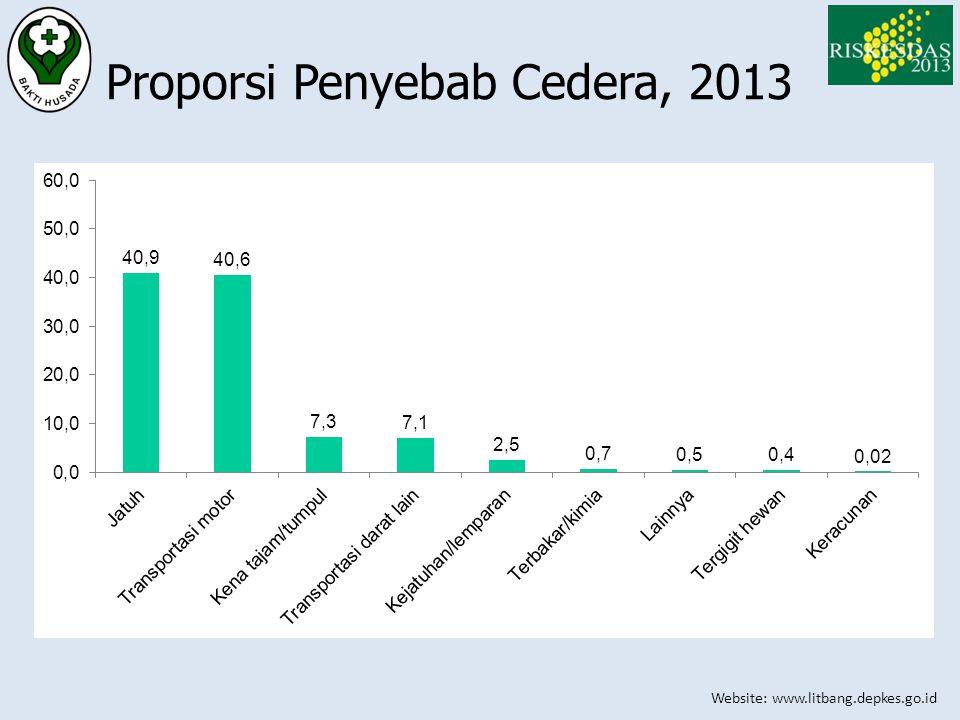 Website: www.litbang.depkes.go.id Proporsi Penyebab Cedera, 2013